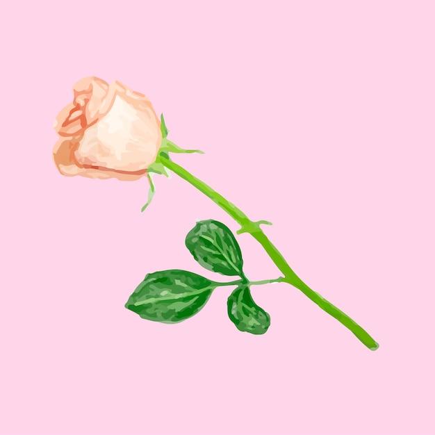 Illustration Du Dessin Fleur Rose Télécharger Des Vecteurs