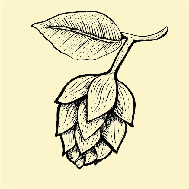 Illustration du fruit de la bière Vecteur Premium