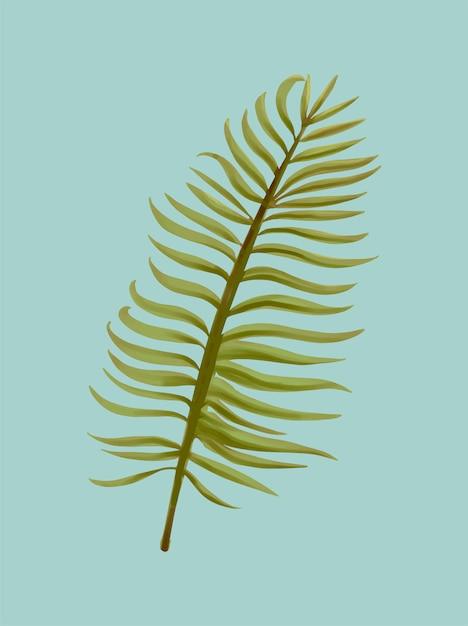Illustration de feuilles de palmier aroca tropical Vecteur gratuit