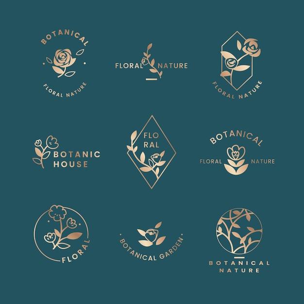 Illustration florale botanique Vecteur gratuit