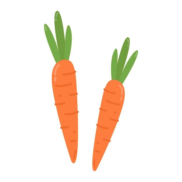 Illustration Graphique De Carottes Orange Saines Vecteur gratuit