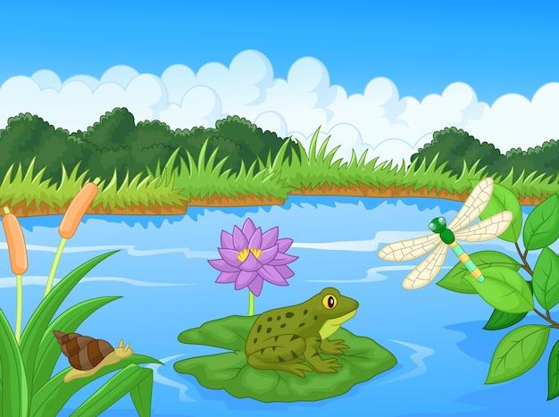 Illustration d'une grenouille dans le lac Vecteur Premium