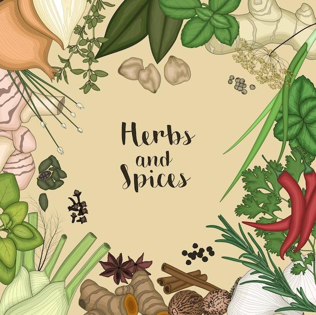 Illustration des herbes et des épices Vecteur Premium