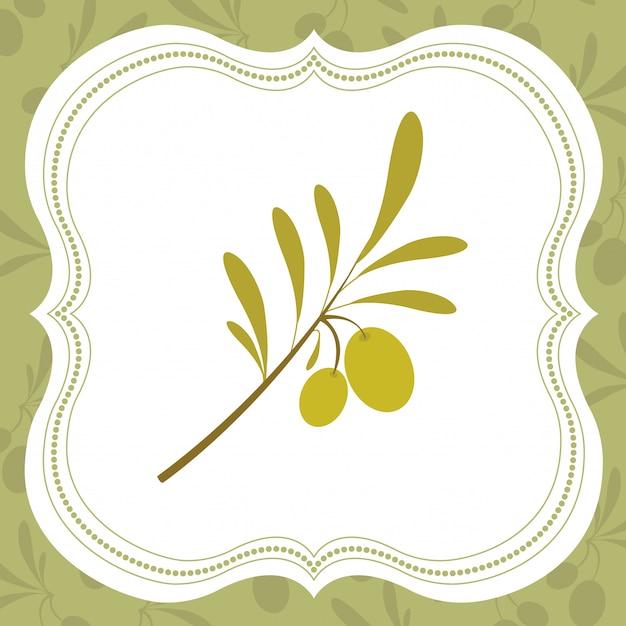Illustration de l'huile d'olive Vecteur Premium