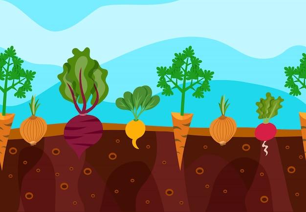 Illustration de légumes en croissance Vecteur gratuit