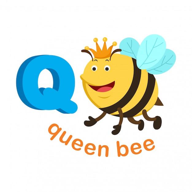 Illustration lettre alphabet isolé q reine des abeilles Vecteur Premium