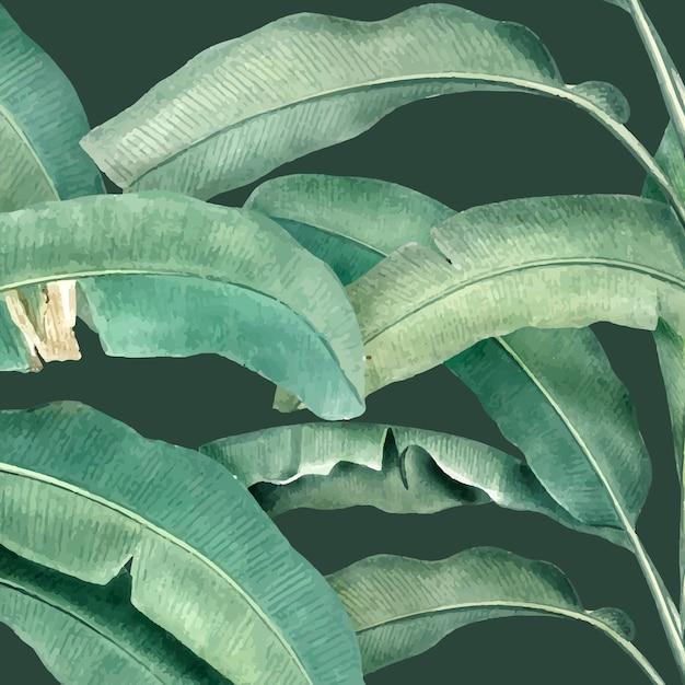 Illustration de modèle d'été tropical Vecteur gratuit