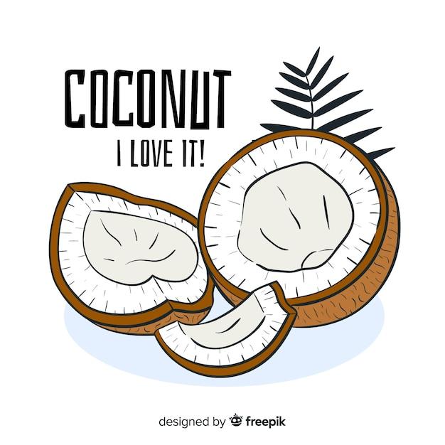 Illustration de noix de coco dessinés à la main Vecteur gratuit