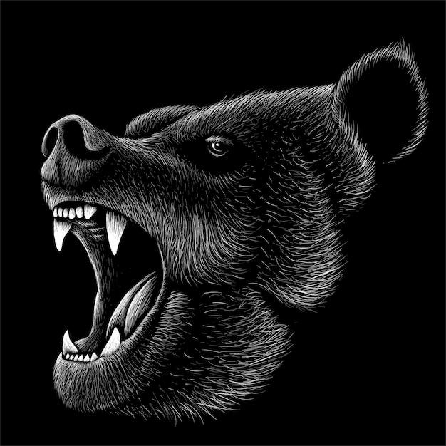 Illustration D'ours Dessiné à La Main Vecteur Premium