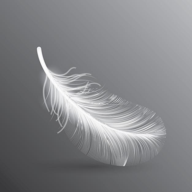 Illustration De Plume D'oiseau Blanc Vecteur Premium