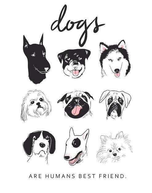 Illustration de races de chien de dessin animé Vecteur Premium