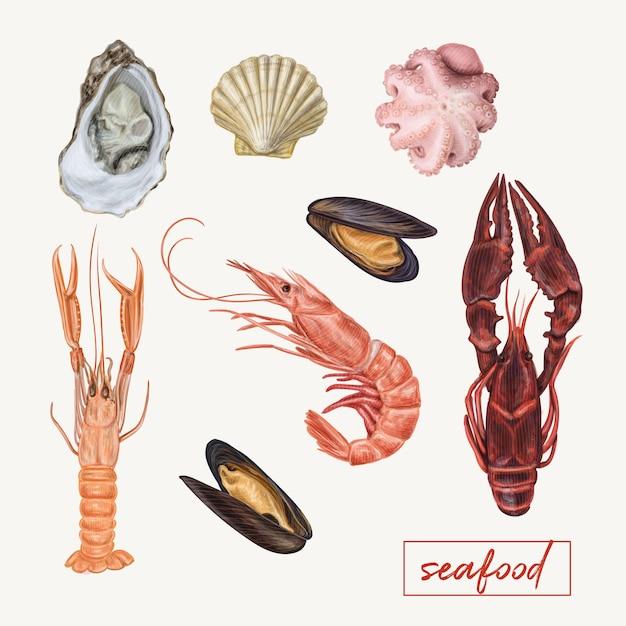 Illustration réaliste de fruits de mer Vecteur Premium