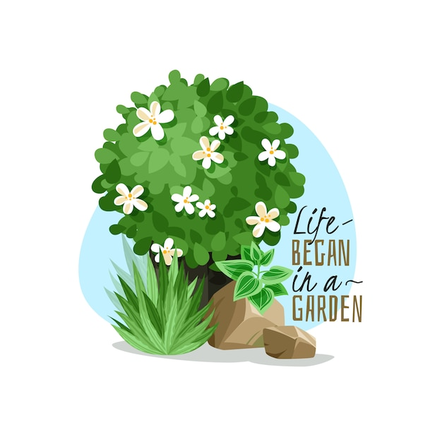 Illustration Simple De Plantes De Jardin Vecteur Premium