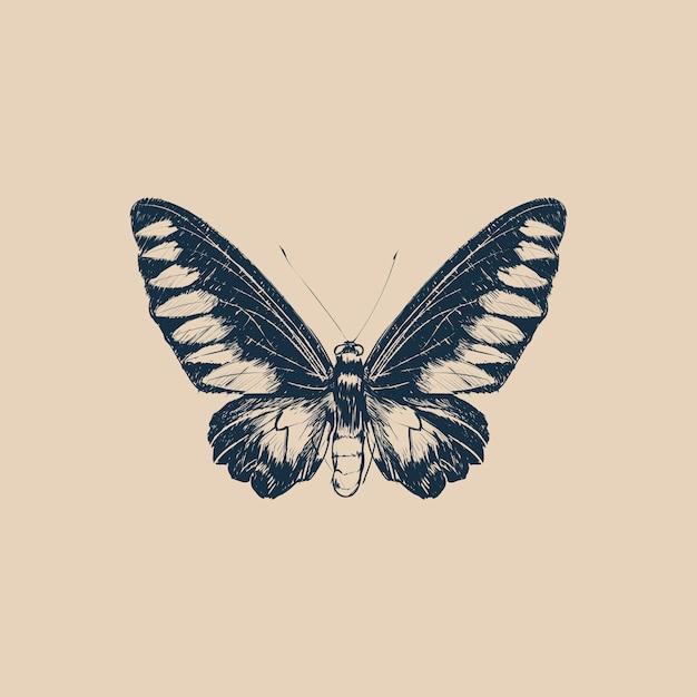 Illustration Style De Dessin De Papillon Vecteur Premium
