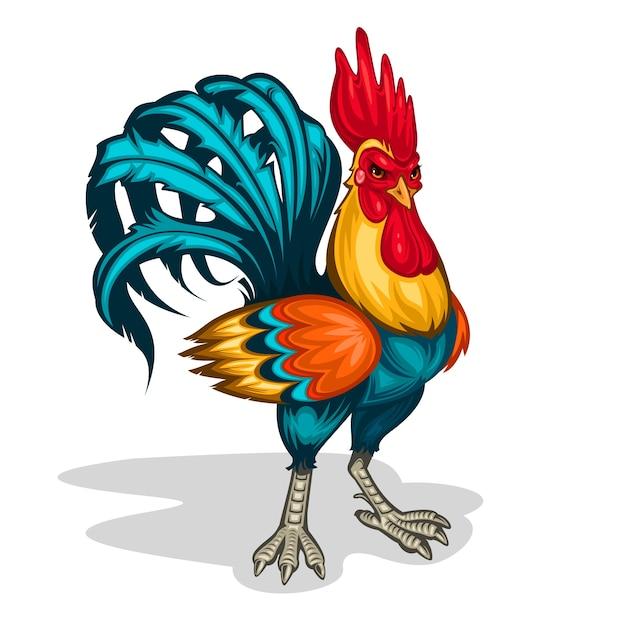 Illustration vectorielle d'un coq Vecteur gratuit