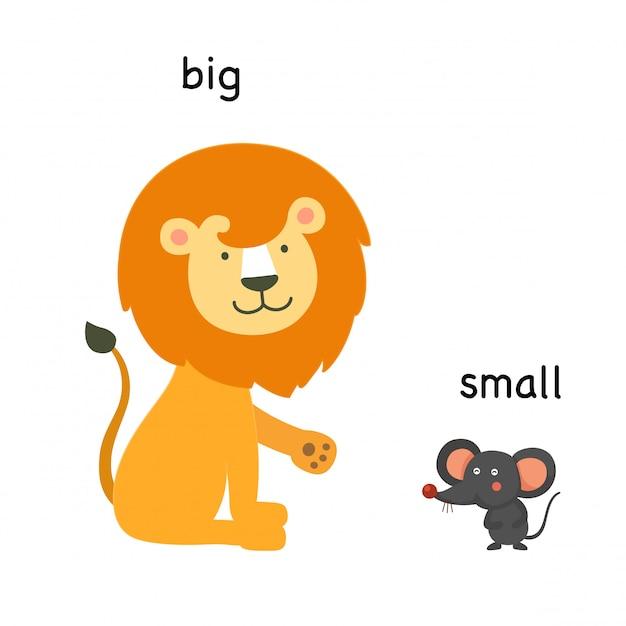 Illustration vectorielle opposée grande et petite Vecteur Premium