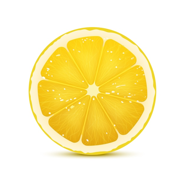 Illustration vectorielle réaliste de tranche de citron Vecteur Premium