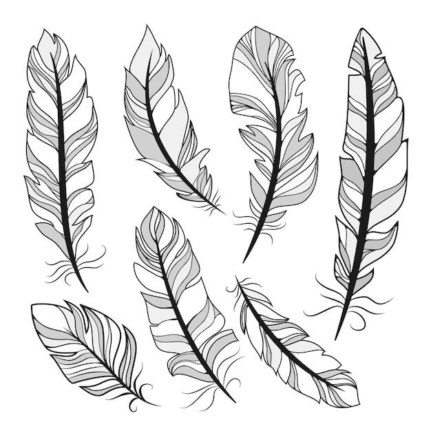Illustration Vectorielle De Silhouettes Plumes Vecteur gratuit