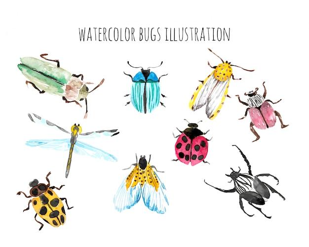 Illustration de la vie de bugs aquarelle Vecteur Premium