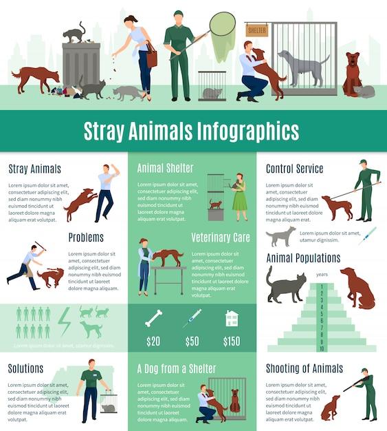 Infographie des animaux errants définie avec la valeur de calcul des services vétérinaires Vecteur gratuit
