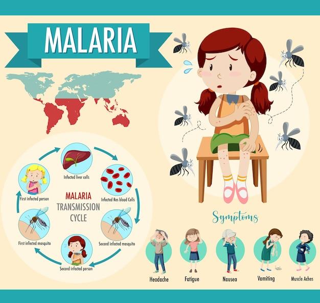 Infographie Sur Le Cycle De Transmission Du Paludisme Et Les Symptômes Vecteur gratuit