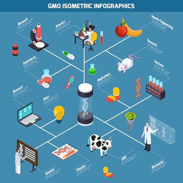 Infographie isométrique des ogm Vecteur gratuit