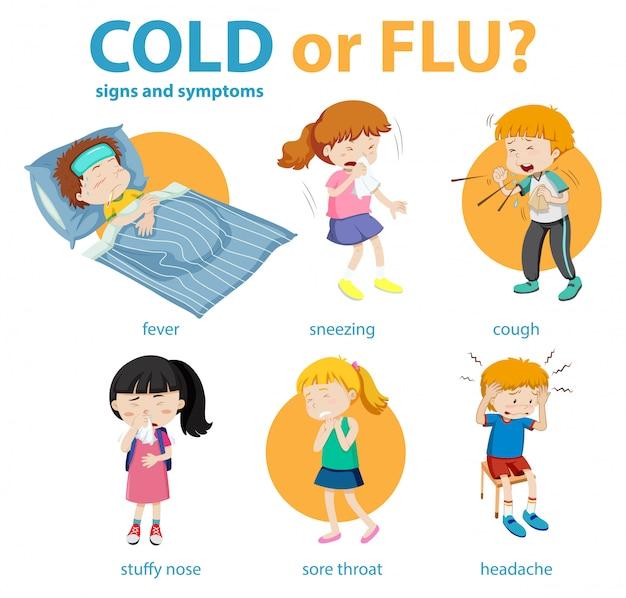 Infographie Médicale Des Symptômes Du Rhume Ou De La Grippe Vecteur gratuit