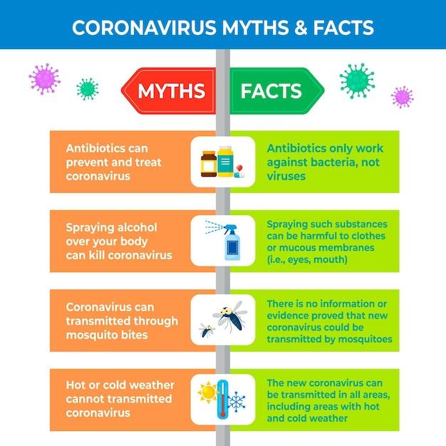 Infographie Sur Les Mythes Et Les Faits Des Coronavirus Vecteur gratuit