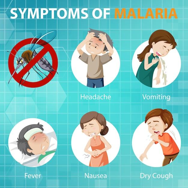 Infographie De Style De Dessin Animé De Symptômes Du Paludisme Vecteur gratuit