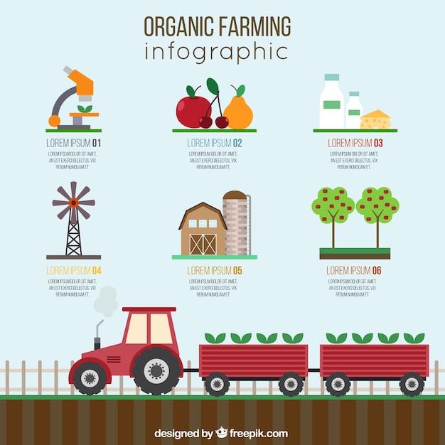 Infographies agriculture biologique Vecteur gratuit