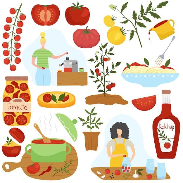 Ingrédient De Tomate Dans Différents Plats, Illustration De Cuisine Maison Vecteur Premium