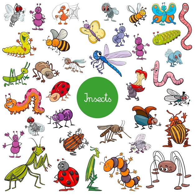 Insectes de dessin animé animaux de caractères grand ensemble Vecteur Premium