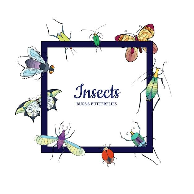 Insectes Dessinés à La Main Voler Isolé Sur Blanc Vecteur Premium