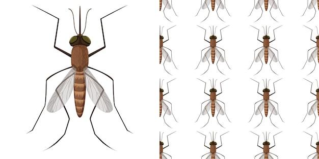 Insectes Moustiques Isolés Sur Fond Blanc Et Sans Soudure Vecteur gratuit