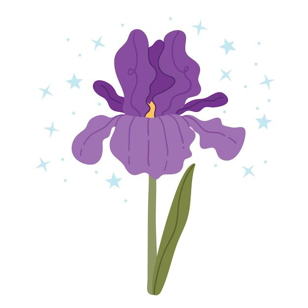 Iris Violet Sur Fond Blanc.illustration Simple. Vecteur Premium