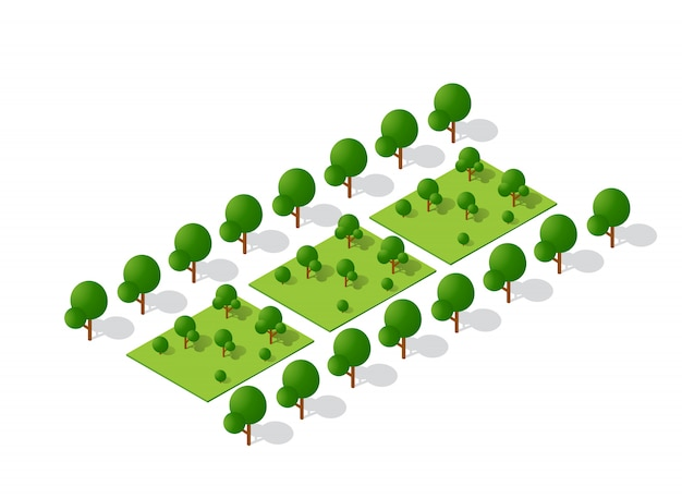Isométrique 3d arbres forêt éléments de nature de camping Vecteur Premium