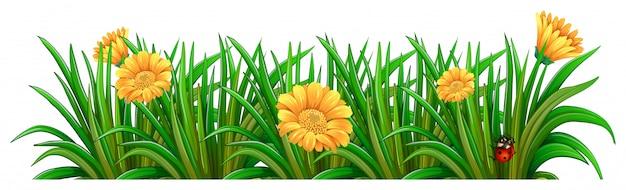 Un Jardin Aux Fleurs épanouies Vecteur gratuit