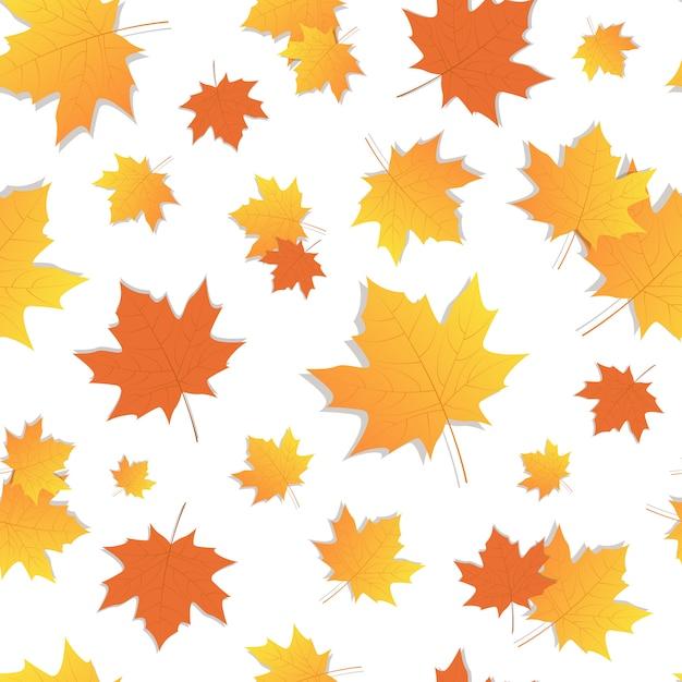 Jaune feuille transparente motif automne Vecteur Premium