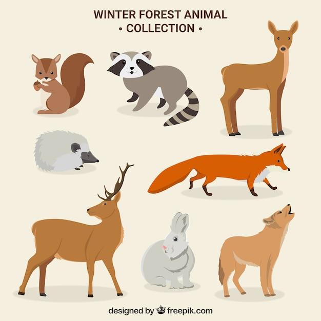 Jeu d'animaux de forêt hiver mignon Vecteur gratuit