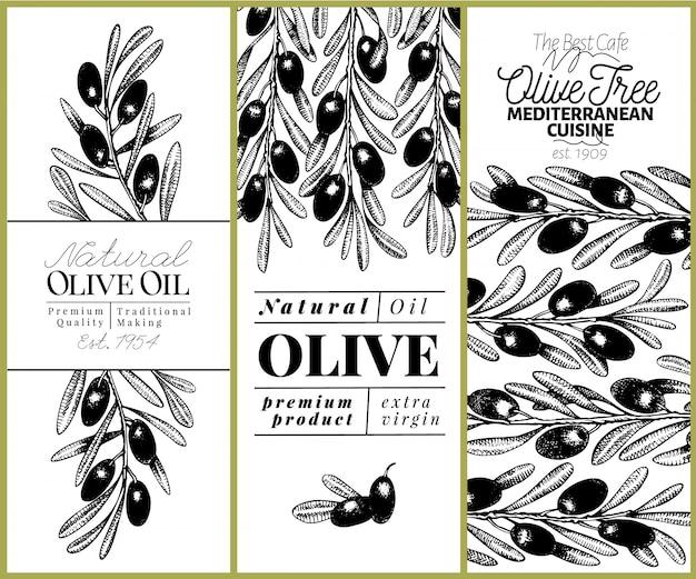 Jeu de bannière d'olivier. illustration rétro de vecteur dessinés à la main. image de style rétro. Vecteur Premium