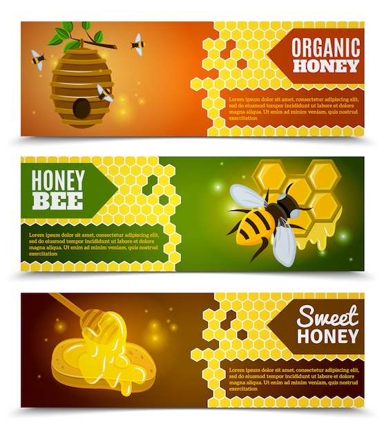 Jeu de bannières au miel Vecteur gratuit