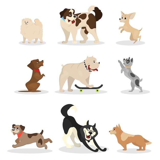 Jeu De Chien. Collection D'animaux Faisant Une Activité Différente Vecteur Premium