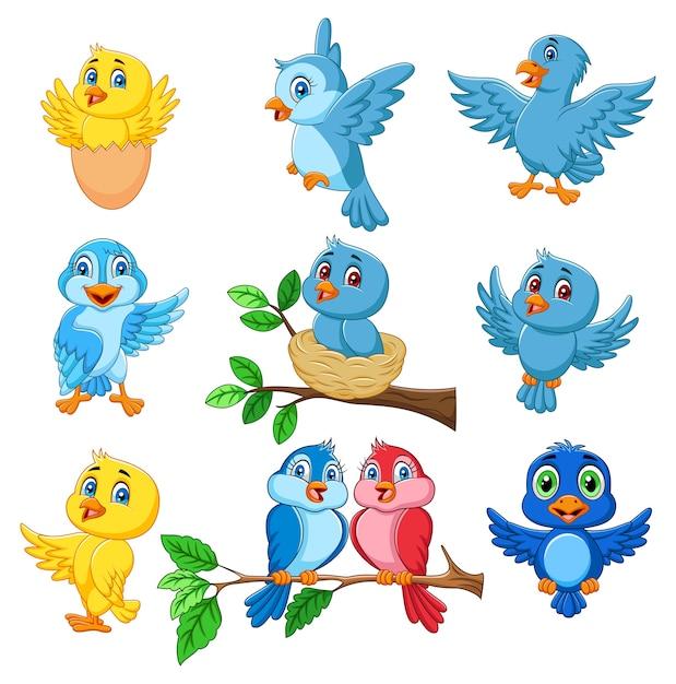Jeu de collection dessin animé oiseaux heureux Vecteur Premium