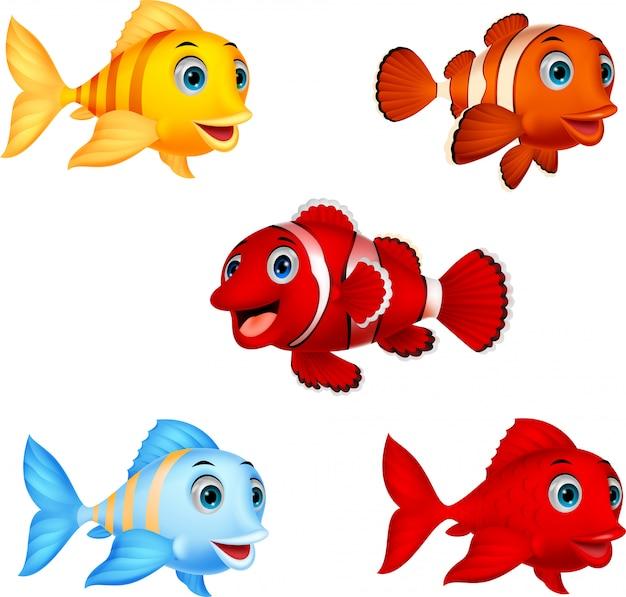 Jeu de collection de poissons de dessin animé Vecteur Premium