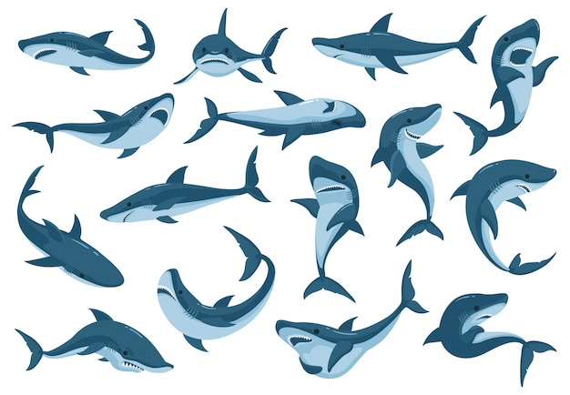 Jeu D'icônes De Dessin Animé De Requin De Mer Vecteur Premium