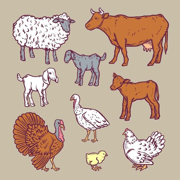 Jeu d'icônes détaillées animaux de ferme Vecteur Premium