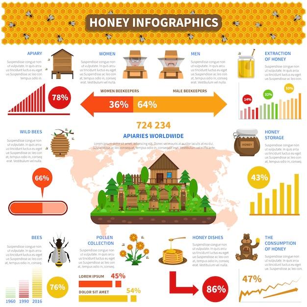 Jeu d'infographie de miel Vecteur gratuit