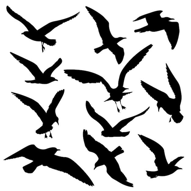 Jeu de vector silhouettes noires d'oiseaux volants Vecteur Premium