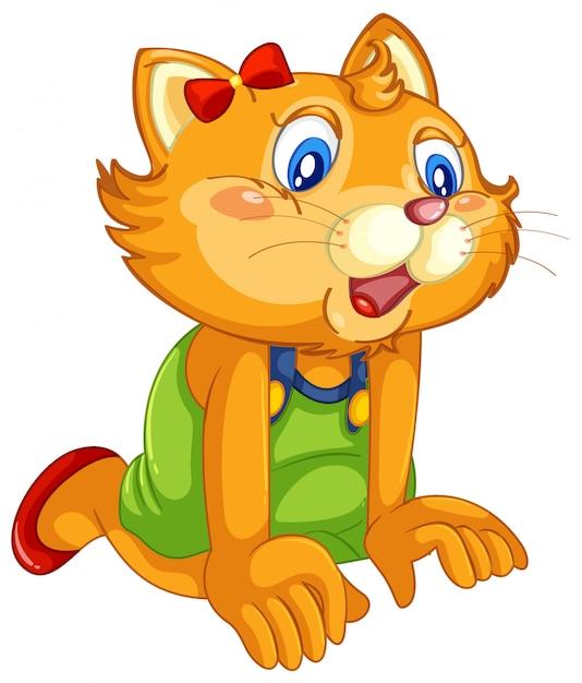 Joli chat chez l'homme comme pose isolée Vecteur gratuit