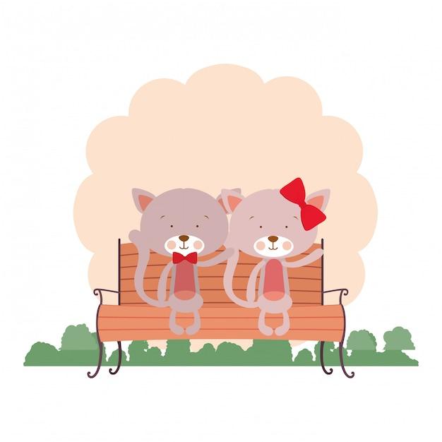 Joli couple de chats assis sur une chaise de parc Vecteur Premium